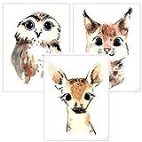 Timalo® 3er Set Bilder Poster Deko Kinderzimmer Babyzimmer | Dekoration Mädchen Junge | t3er01-t006-A4 | Waldtiere Eule, Reh Luchs