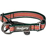 Blueberry Pet 1,5cm S 3M Reflektierendes Bunt Gestreiftes Dunkelgrün und Rosa Hundehalsband für Kleine Hunde