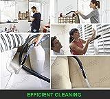 Dustpro Cleaner, Universal 30-35mm Dust Bürste Pinsel, Dust Daddy Dusty Brush für Luft-Entlüftungsöffnungen/Tastaturen/Fächer/Crafts von AOBETAK Vergleich