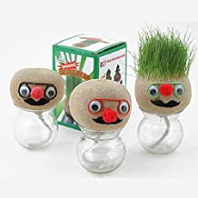 Inovey Mini Diy Magic Grass Plant Pot Head Doll Escritorio Oficina En Maceta
