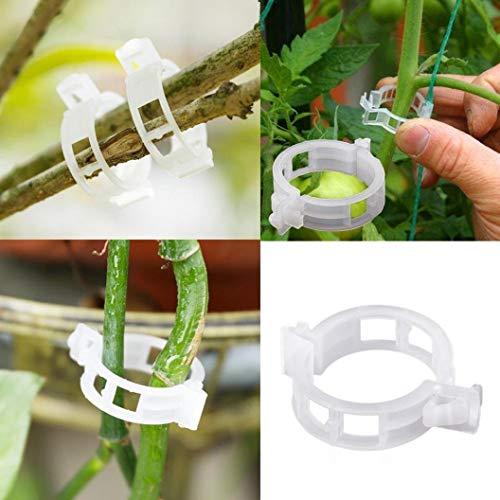 auvstar clip per piante, cantaloupe clip, clip di plastica, clip, clip di sospensione, clip a vite, vite clipsplant clip sostegno pomodori, peperoni, vite piante e fiori da coltivare in (100 pces)