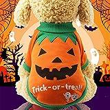 Peanutaod Halloween-lustiger Zwei-beiniger Haustier-Kleidungs-Kürbis XXL