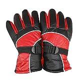 iBaste 48V Elektrische Handschuhe Beheizbare Handschuhe Fahrrad-Handschuhe/Motorrad Handschuhe Elektrische Beheizbare Handschuhe für Herren Damen Winterhandschuhe