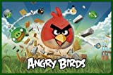 Produkt-Bild: Poster mit Rahmen 61 x 91,5 cm, Grün - Angry Birds gerahmt - Antireflex Acrylglas