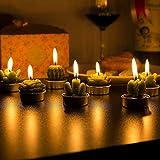 ZeWoo 12 Pcs Zart Kaktus-Kerzen, Dekorativ Handarbeit Zart Kaktus Teelicht Rauchlos Niedlich Grün Pflanze zum Valentinstag, Geburtstagsfeier oder Hochzeit Test