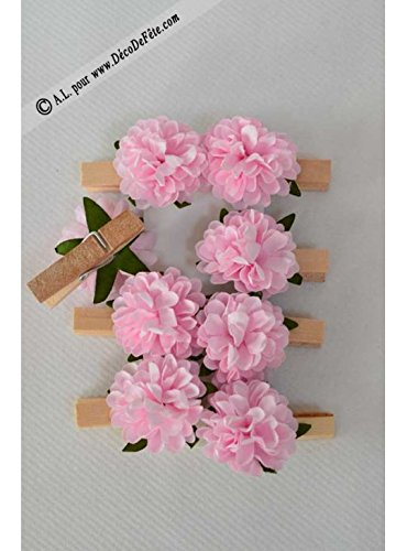 ALLDECO 8 Pinces Pivoine Rose