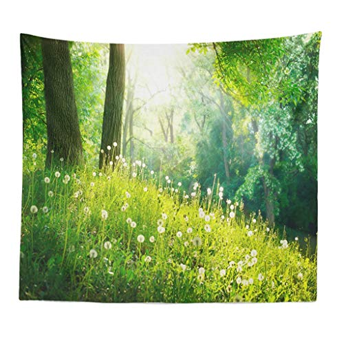 Qmber 2019 Mehrfarbige Wandbehang Decke Tuch groß Indien Bohemian Wand tucher Indischer Buddha mit Tausenden Händen Buddhismus Pflanzen Waldlandschaft Polyesterdruck/B3