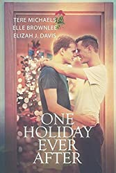 One Holiday Ever After by Tere Michaels (2014-12-19)