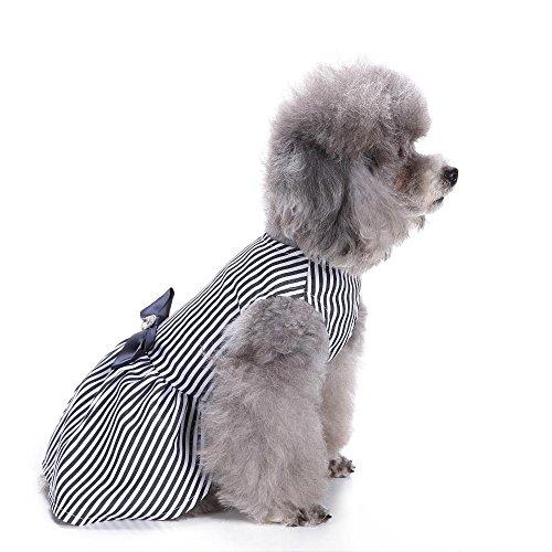 Vip Haustierhund Schwarzweiss-Streifenmuster LNAG , m