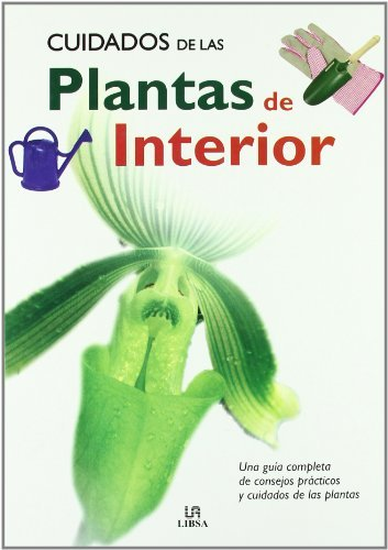 cuidados-de-las-plantas-de-interior-the-care-of-indoor-plants-una-guia-completa-de-consejos-practico