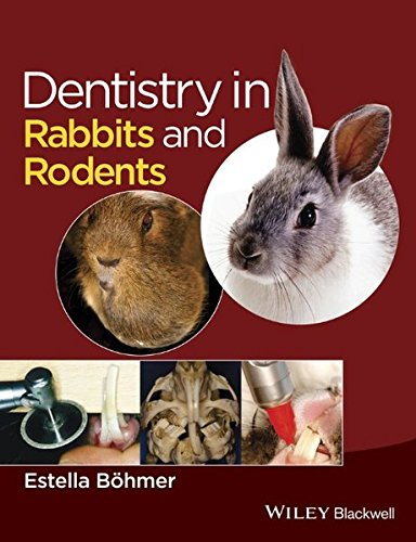 dentistry-in-rabbits-and-rodents