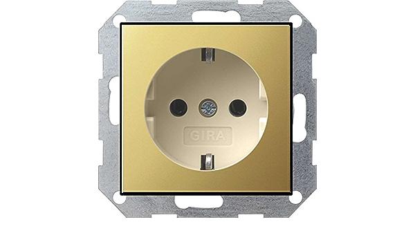 Gira Schuko-Prise de courant Système 55 en acier inoxydable 0188600 stromdose Boîte Réservoir NEUF