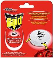 Raid Esca Formiche, Pronta all'Uso, Confezione da 1 Esca Insetticida per Uso in Spazi Interni ed Est
