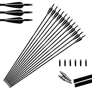 6pcs 31inch Archery Carbon Arrows Hunting Arrows 350 Spine with Replace Arrowheads for Compound and Recurve Bow 30-70lbs
