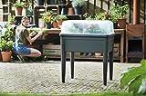 Elho Cultivo mesa Green Basics Super XXL, Laubgrün, 76.7X 58.1X 73.09cm, 6927307736000