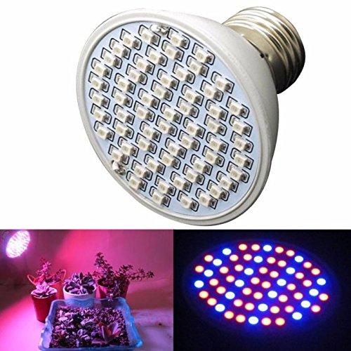 DIKHBJWQ Wasserkraft-Anlage 6W 60LED E27 wächst mit Heller Platte und vollem Spektrum Indoor Indoor-Lampe (Lichterkette/Light/Tischlampe/Nachttischlampe/Nachtlicht) - Bein-anlage