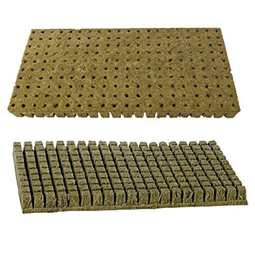 Weiyi0765 Lot de 1 Cubes de Culture hydroponique Rockwool Stonewool pour coupures, clonage, Propagation des Plantes et démarrage des graines, XL: 75 * 75 * 65mm