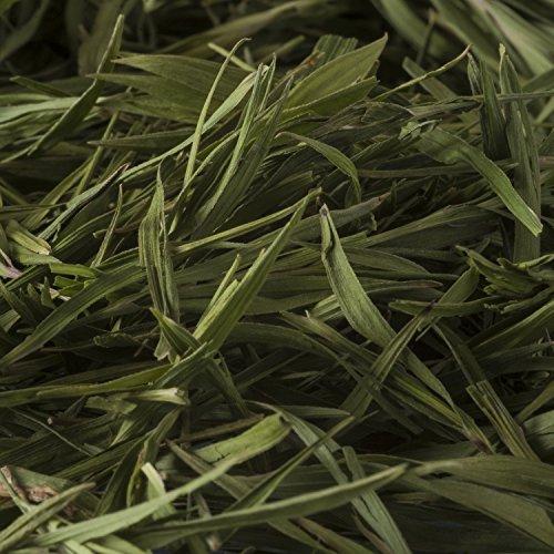 Bambustee, Spitzenqualität, Green Leaf, 50g, Kräutertee ohne Tein oder Koffein – Bremer Gewürzhandel