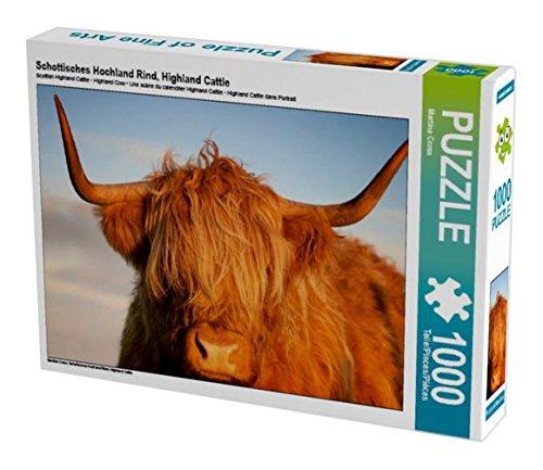 Preisvergleich Produktbild Schottisches Hochland Rind, Highland Cattle 1000 Teile Puzzle quer (CALVENDO Tiere)