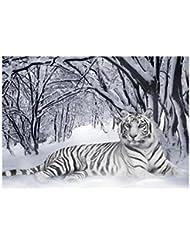 Animaux Sauvages 10015, Tigre Blanc, Poster en Vinyle Affiche Plastifiée Murale Pop-Art Décoration Intérieure avec Dessin Coloré. Grandeur: A5, 148 x 210 mm