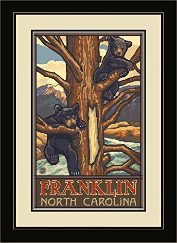 Northwest Art Mall pal-5008fgdm TBC Franklin North Carolina Zwei Bärenjungen gerahmtes Wandbild Art