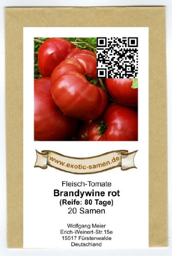 Eine alte, rote Fleischtomate mit dem ursprünglichen Geschmack - Brandywine rot - 20 Samen