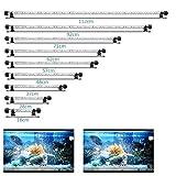 FTALGS Aquarium LED Beleuchtung, LED Aquarium Licht Aquarium Beleuchtung Lampe Lich Unterwasser BeleuchtungAufsatzleuchte Abdeckung Wasserdicht Lampe Stecker EU für Fisch Tank mit (18 * 37cm, Weiß)