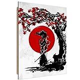 Feeby. Wandbilder - 1 Teilig- 50x70 cm - Bilder Kunstdrucke Deko Panel, Afro Samurai - DDJVigo, Comic, Anime, Rot