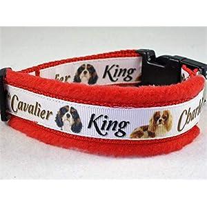 """Halsband""""Cavalier King Charles Spaniel"""" Größe S 30 bis 35 cm Halsumfang"""