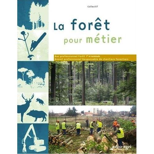 La forêt pour métier : Bac professionnel Forêt et BP Responsable de chantiers forestiers