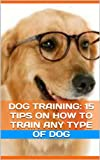 Dog Training: 15 Tips On How To Train Any Type Of Dog
