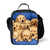 Best Thermos Lunch Boxes For Boys - Coloranimal Stylish Lunch Boxes Lovely Dog Labrador Prints Review