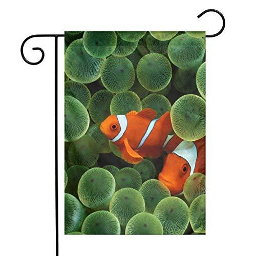 IconSymbol Dekorative Outdoor zweiseitige Garten Flagge Clown Fisch 30cm x 45cm Haus Hof saisonale Flaggen -