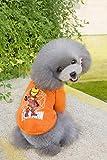 QINCH Home Artículos para Mascotas Ropa para Perros Ropa para Perros otoño e Invierno versión Q suéter (Color : Orange, Size : M)