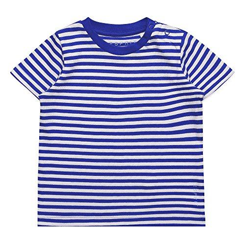 ESPRIT Baby-Jungen T-Shirt RJ10262, Blau (Bright Blue 442), 80