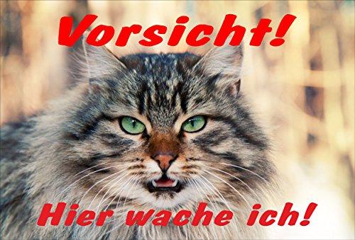 Schild Katze Vorsicht – Hier wache ich – Katzenschild - 30x20cm Hartschaum Aluverbund -S313E (Schild Katze Vorsicht)