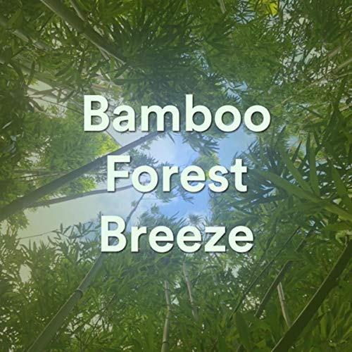 Bamboo Forest Breeze