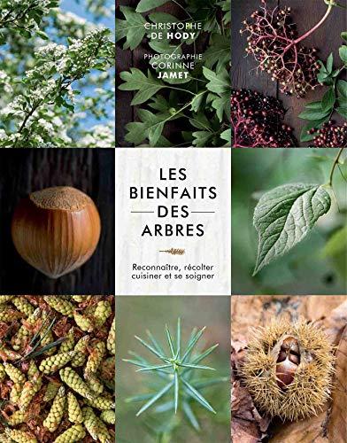 Les bienfaits des arbres: Reconnaître, récolter, cuisiner et se soigner par Christophe De Hody