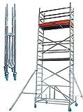 LIF065 Escalera Andamio, Plegable, 2000 mm x 600 mm Plataforma, 8 m Longitud