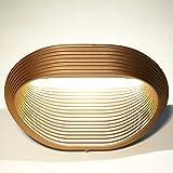Glighone LED Wandleuchte Innen Gold Wandlampe Up and Down Modern Flurlampe aus Aluminium Warmweiß