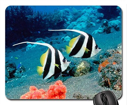LOVELY MARINE SPECIMENS Mouse Pad, Mousepad (Fish Mouse Pad)