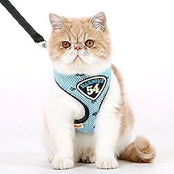 Arnés con correa para perros o gatos, de la marca Hoopet