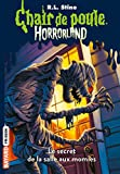 Telecharger Livres Horrorland Tome 06 Le secret de la salle aux momies (PDF,EPUB,MOBI) gratuits en Francaise