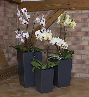 Dekoratives 3er Set Blumenkübel Blumentopf schiefer grau glänzend Pflanzeinsatz Coubi Serie von Prosperplast - Du und dein Garten
