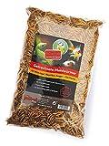 mypetfoodmix getrocknete Mehlwürmer, 2000 ml, für Wildvögel, Reptilien, Nager, Zierfische