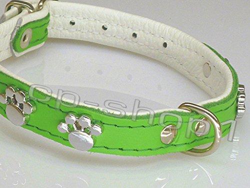 """HALSBAND """"Tatze"""" - Hundehalsband - 42 cm (S) - Grün - Echt Leder"""