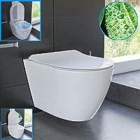 spulrandloses hange wc und nanobeschichtung aus sanitarkeramik mit duroplast wc sitz inkl soft