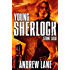 Stone Cold (Young Sherlock Holmes Book 7)