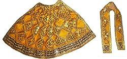 FABLOOK YELLOW Embroided Sherawali Vaishno Devi Durga Mata Lehenga Chunni Dress/ Vastra/ Poshak