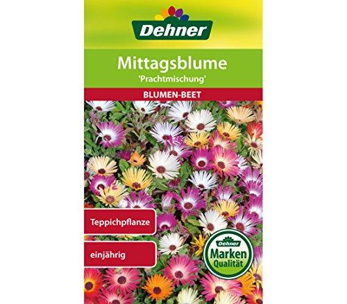 "Dehner Blumen-Saatgut, Mittagsblume ""Prachtmischung"", 5er Pack (5 x 0.8 g)"
